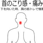 首肩こりの症例8|愛知県一宮市の鍼灸院|堀田治療院