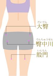 臀部・大腿のツボのイラスト